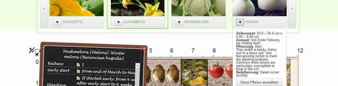 online garden planner helps you plan a vegetable garden according to the model of nature